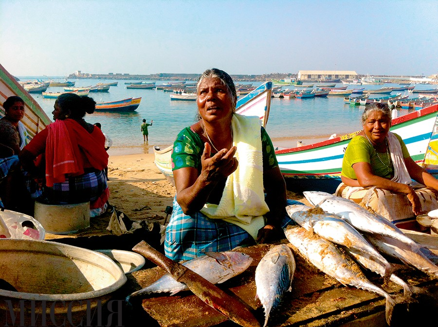 Как выжить в Индии