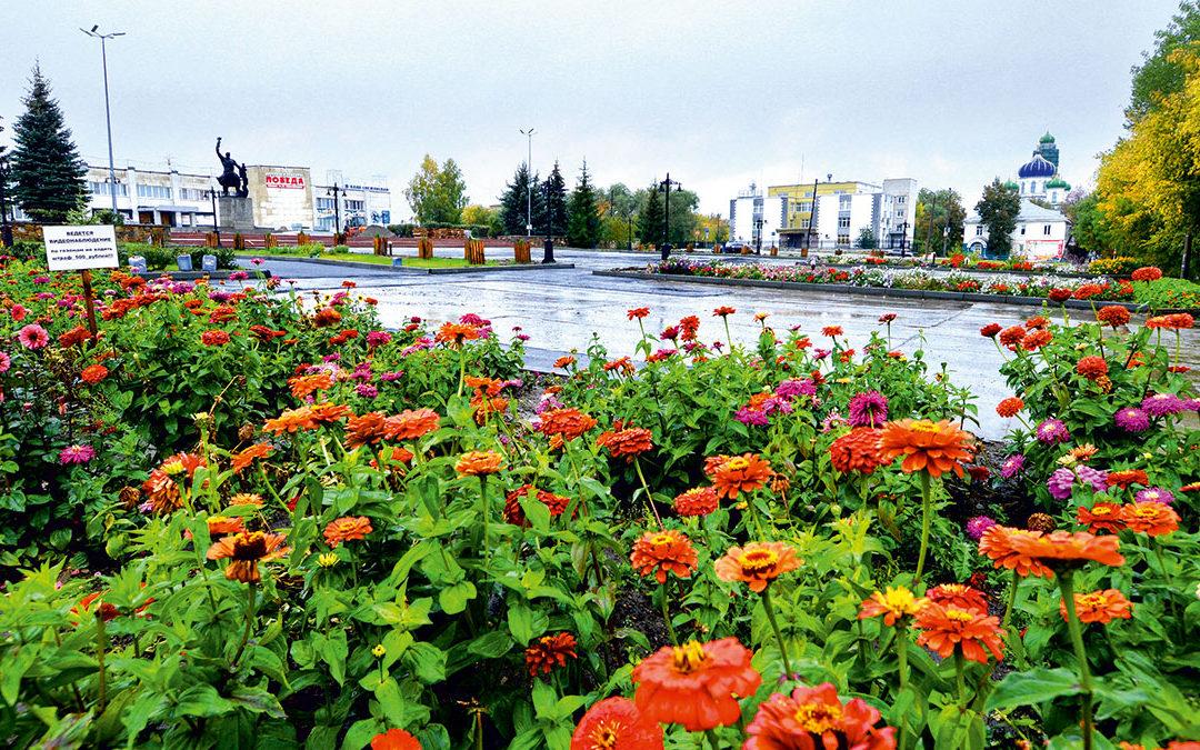 Цветы Кыштыма